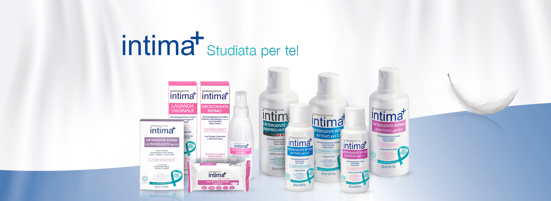 linea_intima+